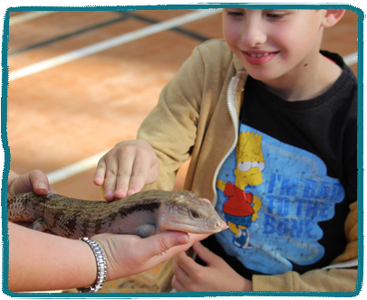 Animal Workshop Kids Holiday Camp Essex